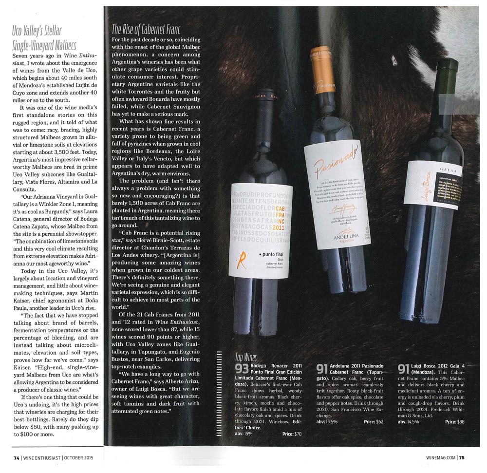 WineEnthusiast_2011Pasionado