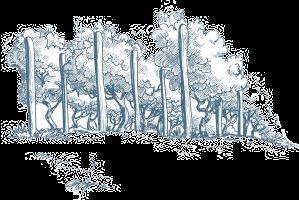 andeluna-viñedos-ilustracion